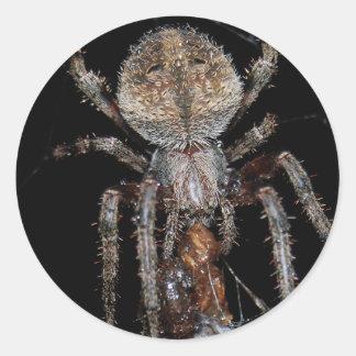 Araña de granero pegatina redonda