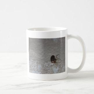 Araña de Itsy Bitsy Tazas