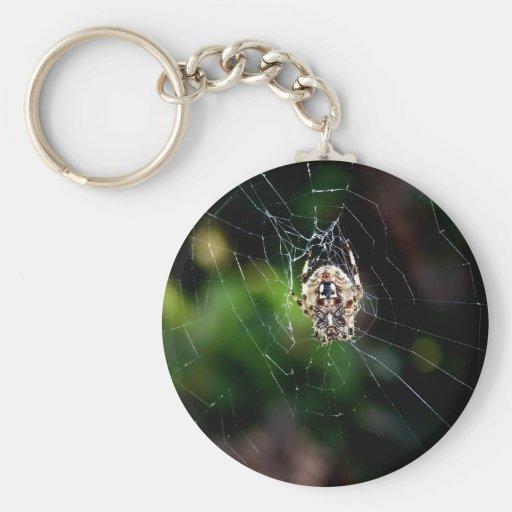 Araña de jardín del orbe que teje llaveros personalizados