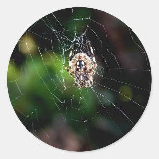 Araña de jardín del orbe que teje pegatina redonda