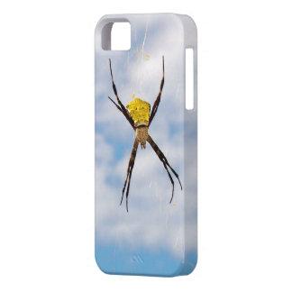 Araña de jardín hawaiana grande iPhone 5 fundas