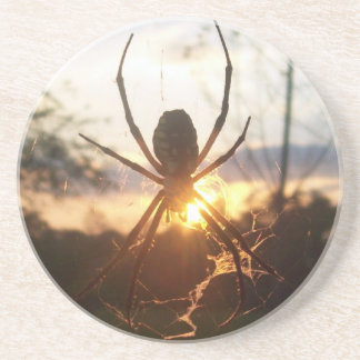 Araña de jardín posavasos diseño