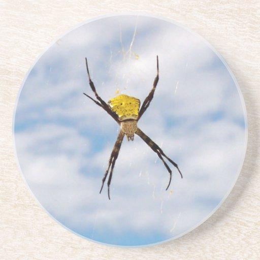 Araña de jardín posavasos cerveza