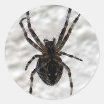 Araña de la araña pegatina redonda