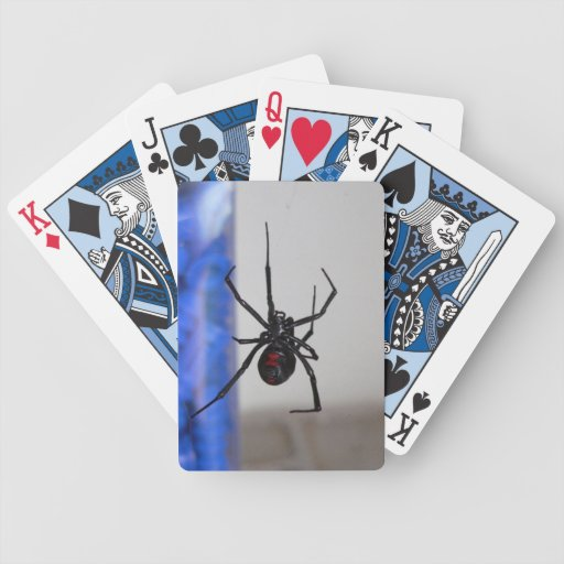 Araña de la viuda negra baraja cartas de poker