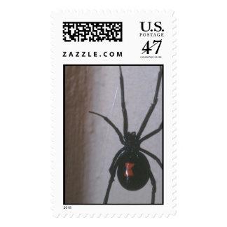 Araña de la viuda negra estampillas