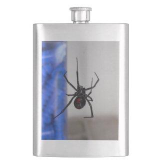 Araña de la viuda negra petaca