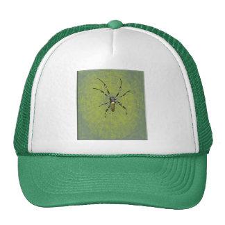 Araña de oro del orbe gorras de camionero