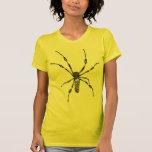Araña de oro del orbe playeras