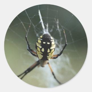 Araña de oro del tejedor etiqueta redonda