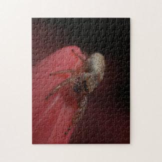 Araña de salto en la flor rosada rompecabeza con fotos
