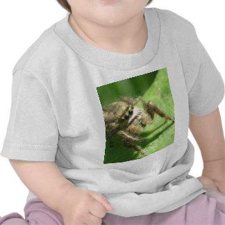 Araña de salto camisetas