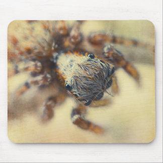 Araña de salto tapete de ratones