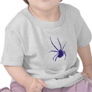 Araña de spider aquel spi