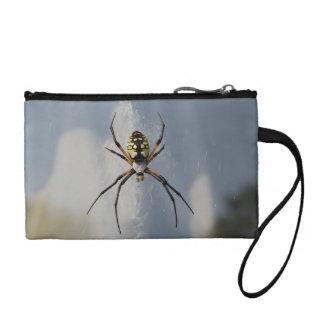 Araña del Argiope