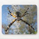 Araña del Argiope Alfombrillas De Ratones