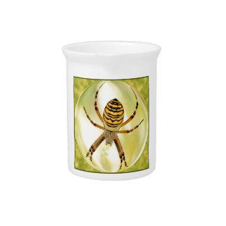 Araña del Argiope en esfera Jarrón