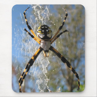 Araña del Argiope Mousepads