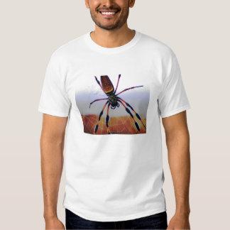 Araña del bicho en el Web Playera