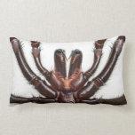 Araña del Embudo-Web de Sydney Almohadas