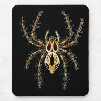 Araña del lince mouse pads