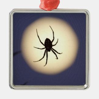 Araña del orbe en tela con la Luna Llena, en el su Ornamento De Navidad