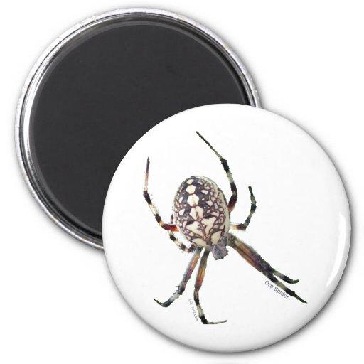 Araña del orbe imán para frigorífico