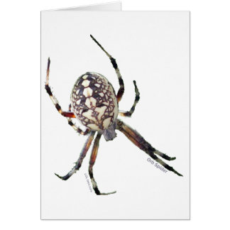 Araña del orbe tarjeta de felicitación
