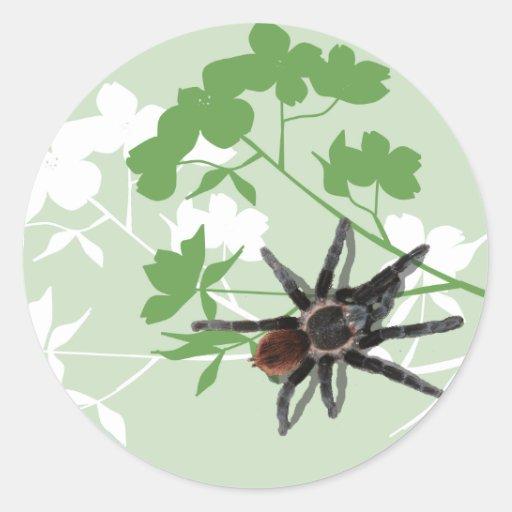 araña del tarantula en el pegatina del diseño del