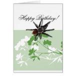 araña del tarantula en tarjetas del diseño del flo