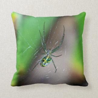 Araña del tejedor del orbe de la huerta cojín