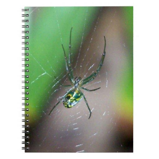 Araña del tejedor del orbe de la huerta libreta espiral