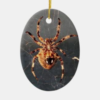 Araña del tejedor del orbe adornos