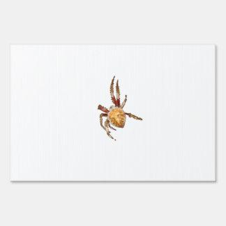 Araña del tejedor del orbe del jardín carteles