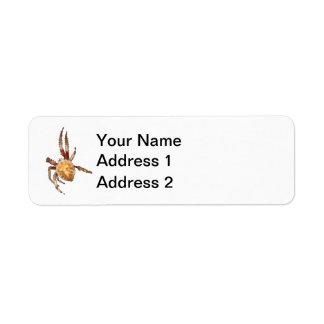Araña del tejedor del orbe del jardín etiqueta de remitente