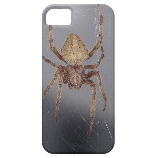 Araña del tejedor del orbe del jardín iPhone 5 Case-Mate carcasa
