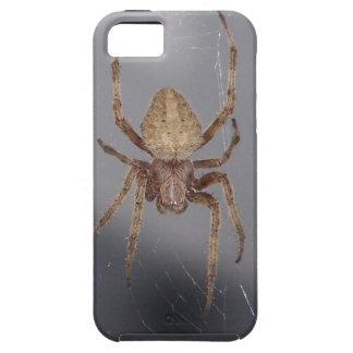 Araña del tejedor del orbe del jardín iPhone 5 coberturas