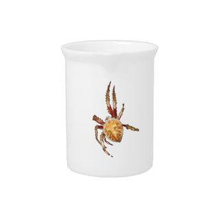 Araña del tejedor del orbe del jardín jarras de beber