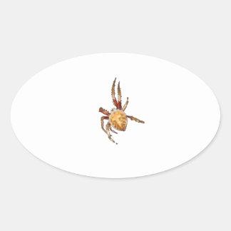 Araña del tejedor del orbe del jardín pegatina ovalada