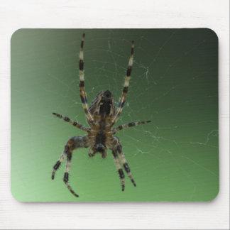 Araña del World Wide Web del orbe Tapetes De Ratones
