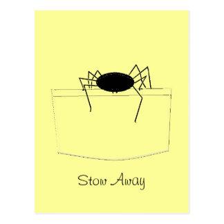 Araña en bolsillo postales