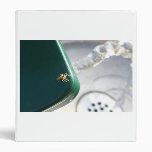 Araña en foutain del agua