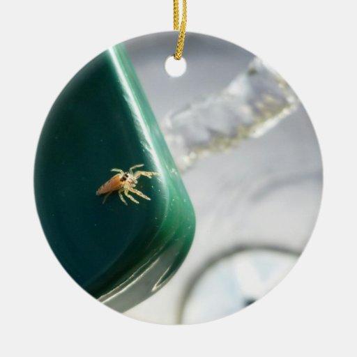 Araña en foutain del agua adorno navideño redondo de cerámica