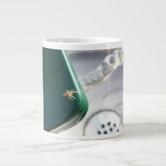 Araña en foutain del agua taza grande