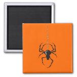 Araña en los imanes (negros) del filamento
