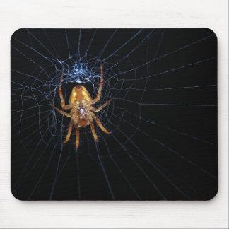 Araña en spiderweb tapetes de raton
