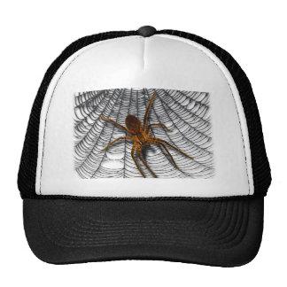 araña en tela gorras