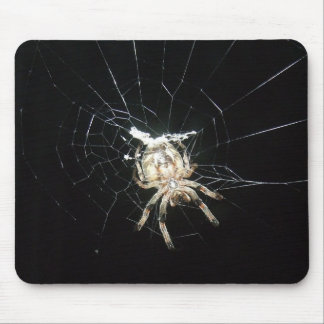 Araña en Web Mousepad Tapete De Ratones