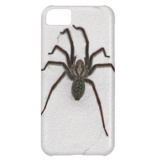Araña espeluznante