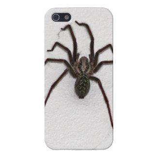 Araña espeluznante iPhone 5 cárcasas